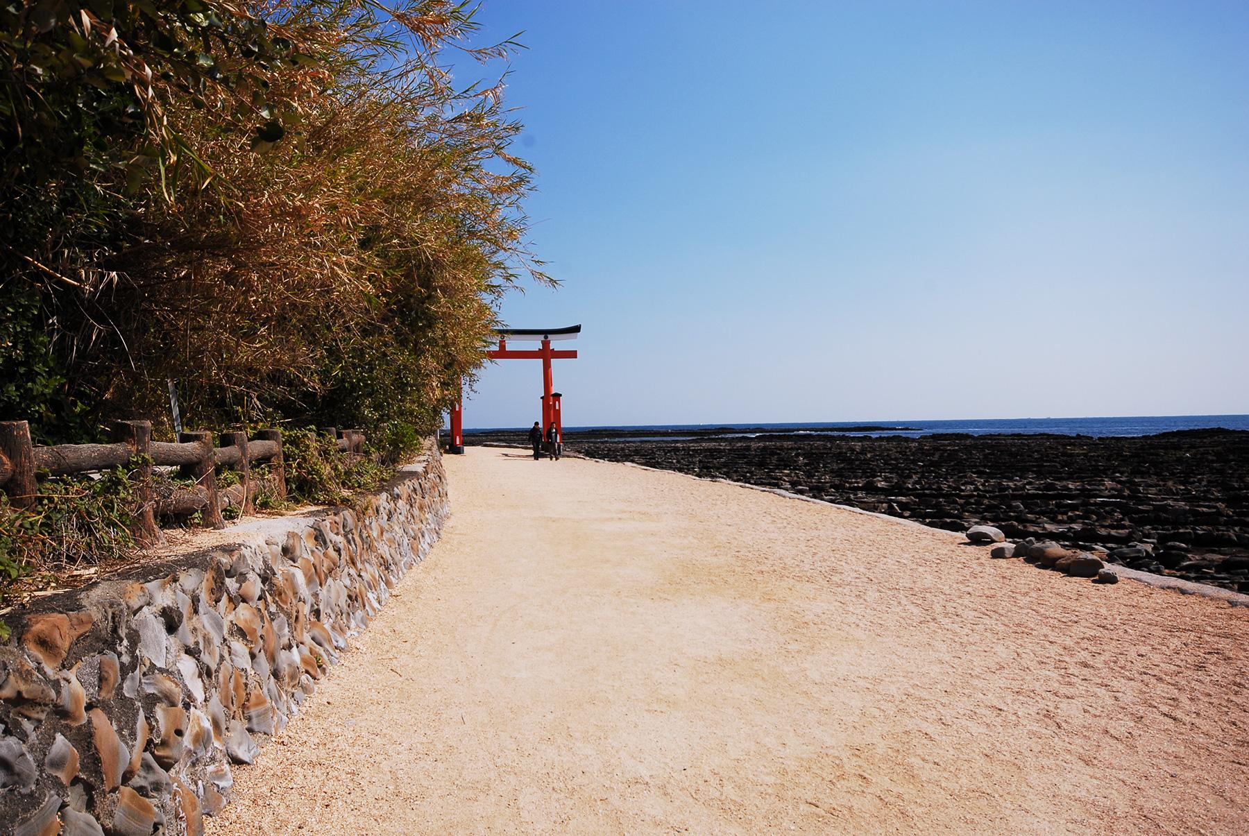 青島神宮の鳥居